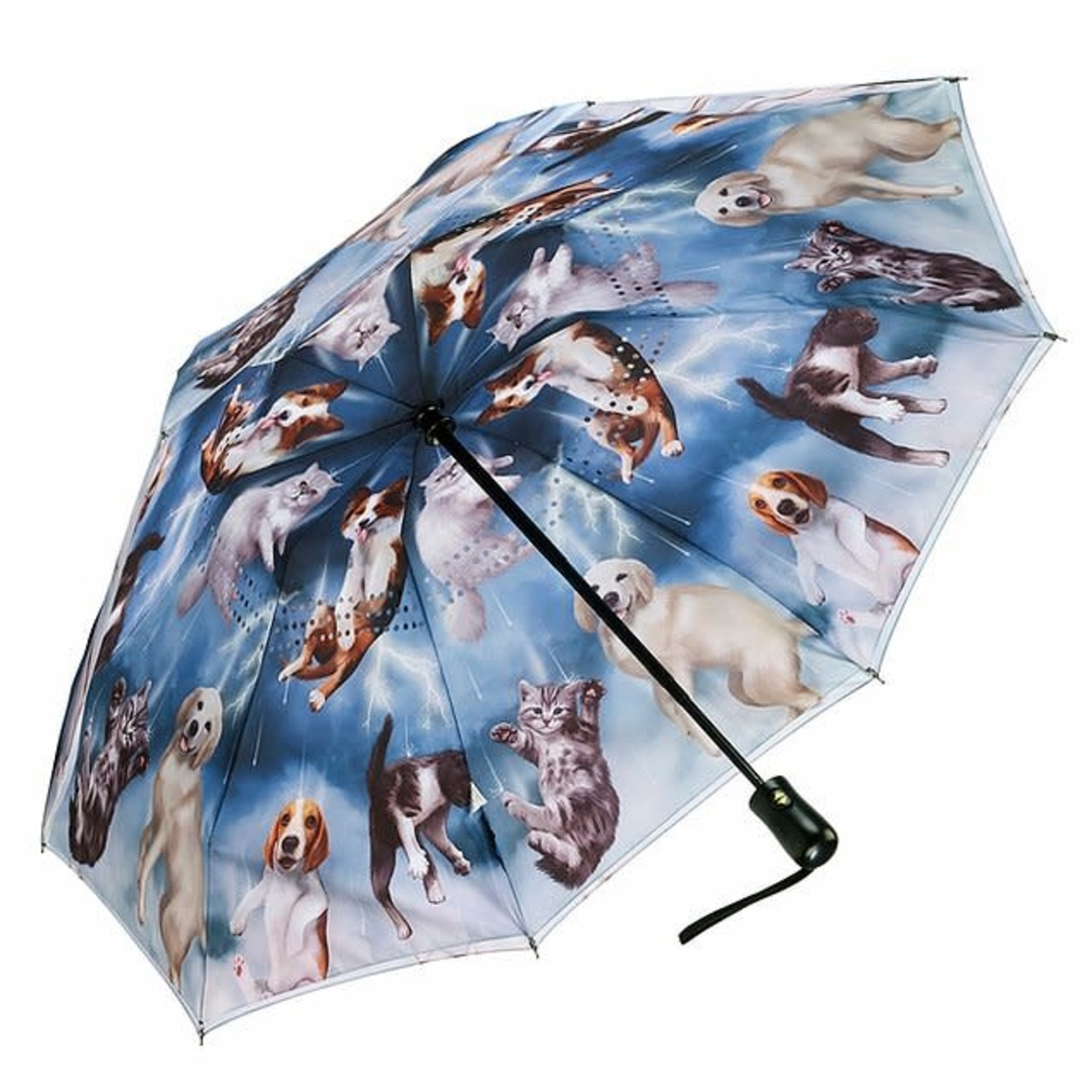 Raining Cats & Dogs Reverse Close Folding Umbrella