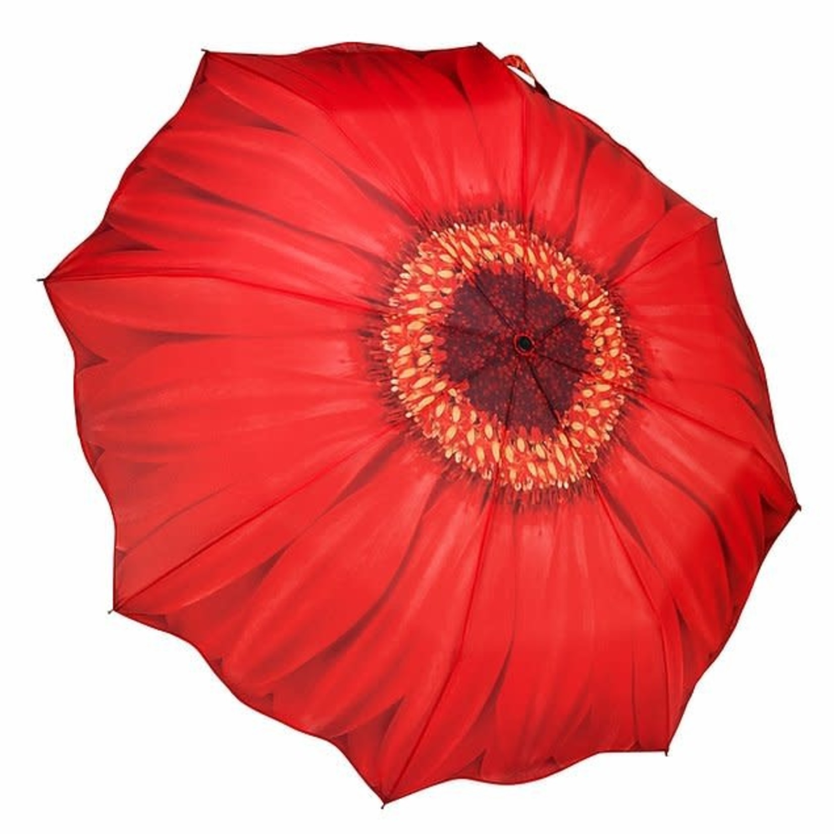 Red Daisy Folding Umbrellla