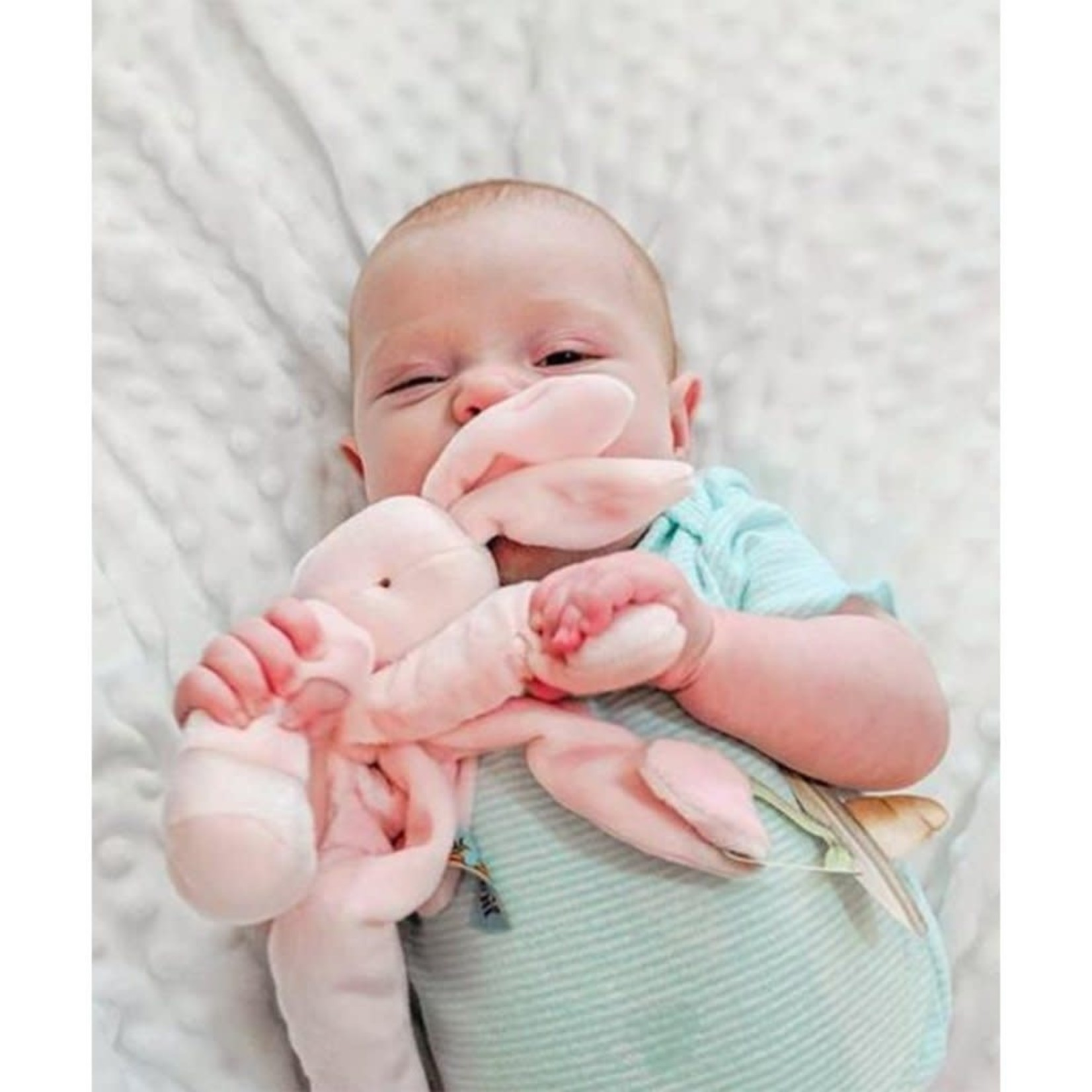 Bunnies By  Bay Silly Blossom Buddy Bunny in Pink