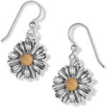 Brighton Daisy Dee French Wire Earrings