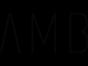 AMB Designs International
