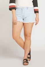 Volcom 1991 Shorts