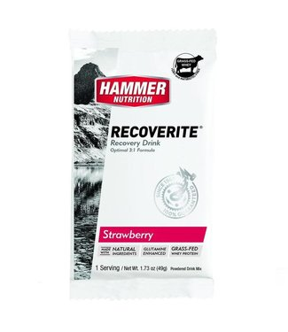 Hammer Nutrition Recoverite Strawberry