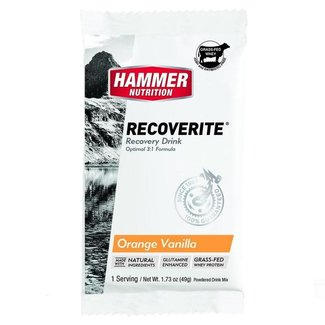 Hammer Nutrition Recoverite Orange-Vanilla