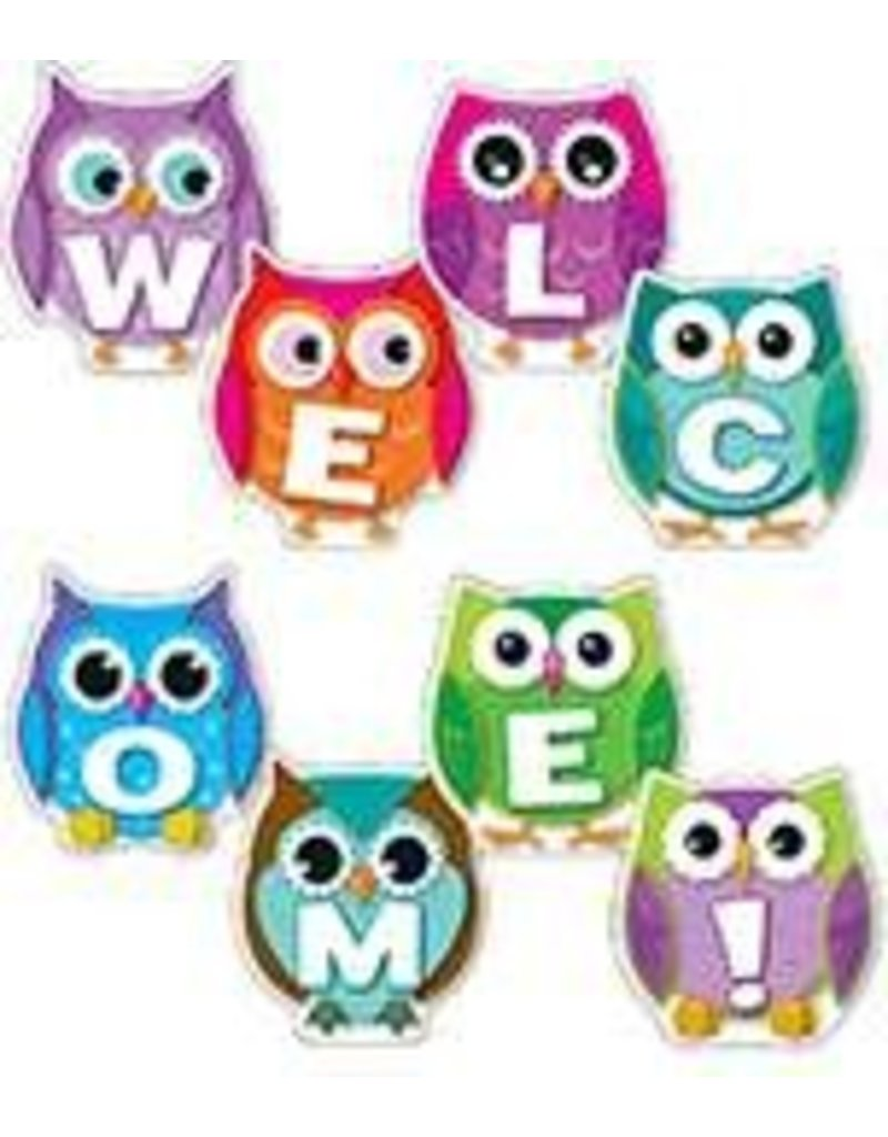Colorful Owl Welcome! Bulletin Board Set