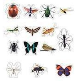 Insects: Photographic Shape Stickers