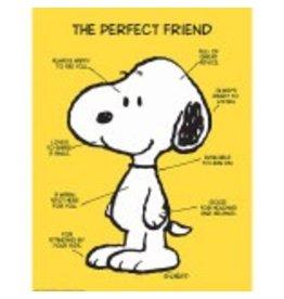 Peanuts® The Perfect Friend