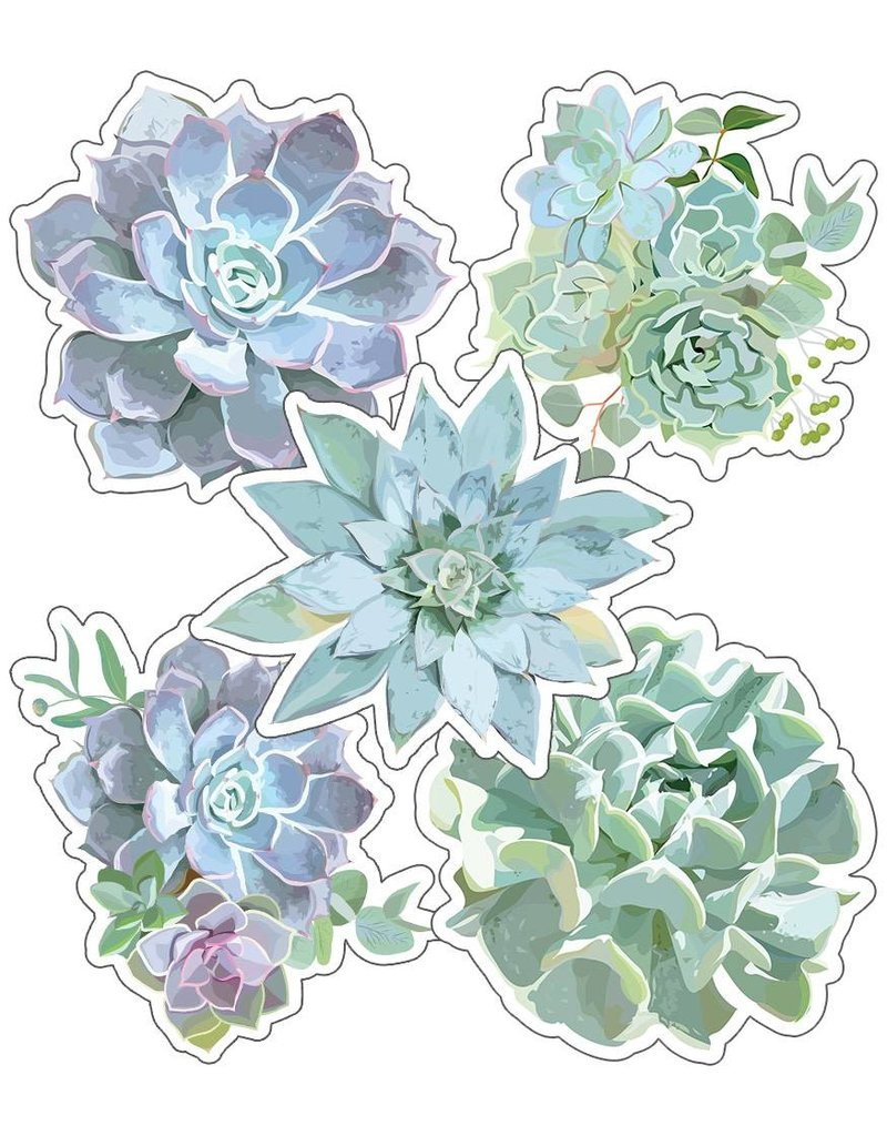 Simply Stylish Succulents Colorful Cut Outs Assorted Designs