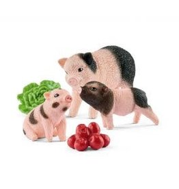 *Miniature pig mother and piglets