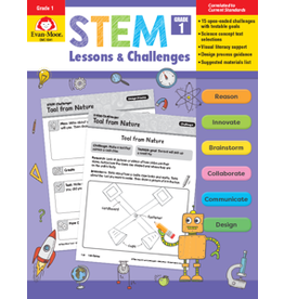 Stem Lessons and Challenges