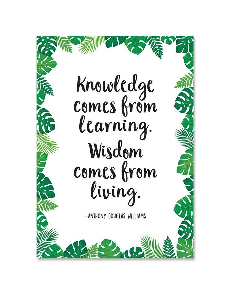 Knowledge comes from learning poster