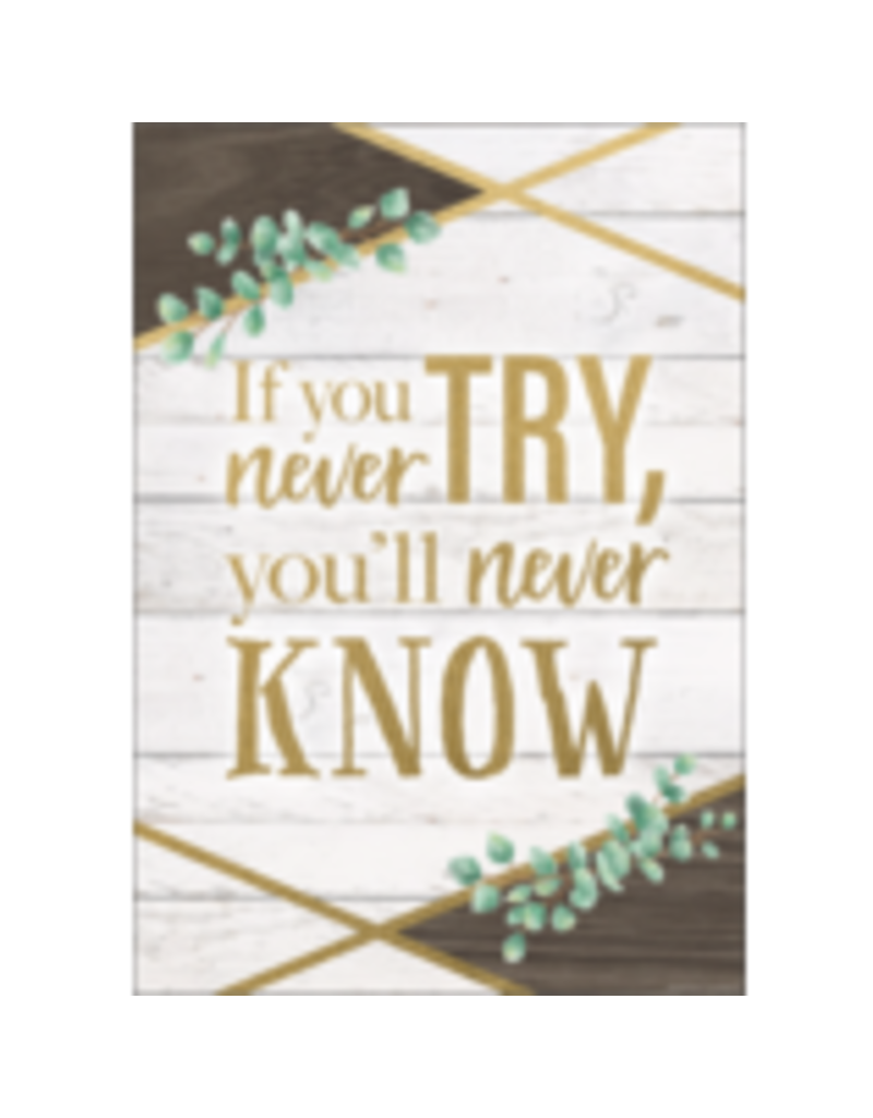If You Never Try You'll Never Know Positive Poster