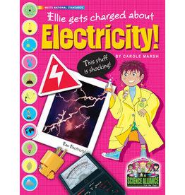 SA-P Electricity