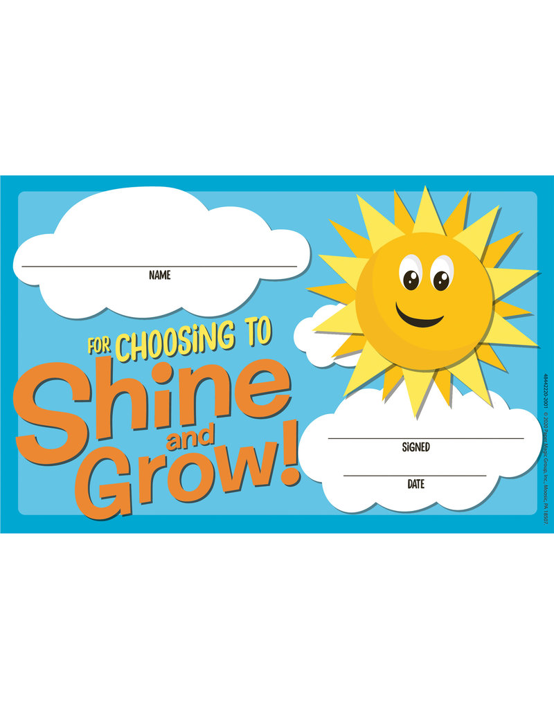 Choosing to Shine & Grow Recognition Award