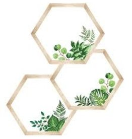 Simply Boho  Hexagon Cut Outs