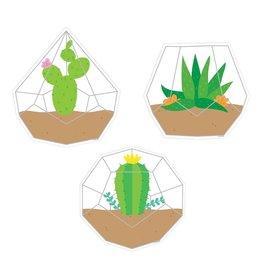 Positively Plants Terrariums Accents