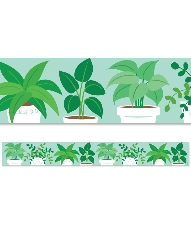Positively Plants Potted Plants Border
