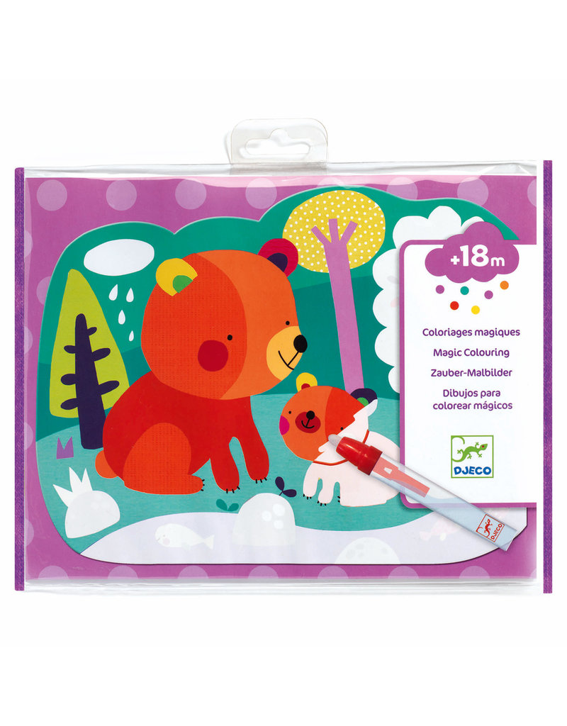 Hidden in the Woods Paint with Water Activity Set