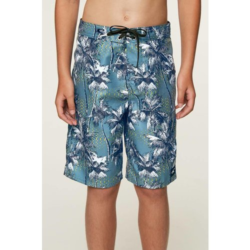 ONEILL YOUTH DARN OLD PALMER BOYS BOARDSHORTS