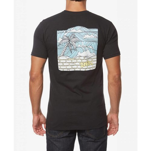 ONEILL MENS SECRET SPOT S/S TEE, BLACK
