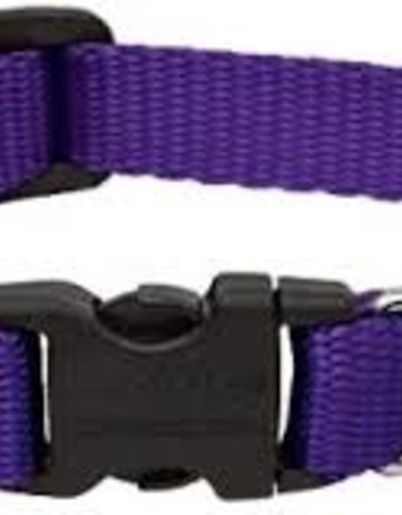"LupinePet Lupine 3/4"" Purple Collar 13""-22"""