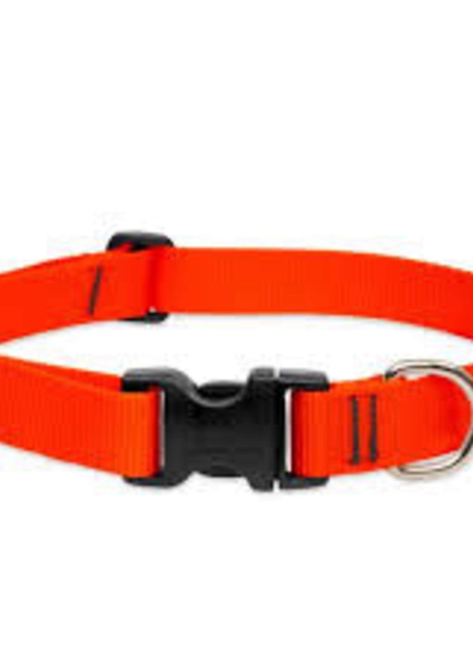 "LupinePet Lupine Collar 1"" Blaze Orange 12-20"""