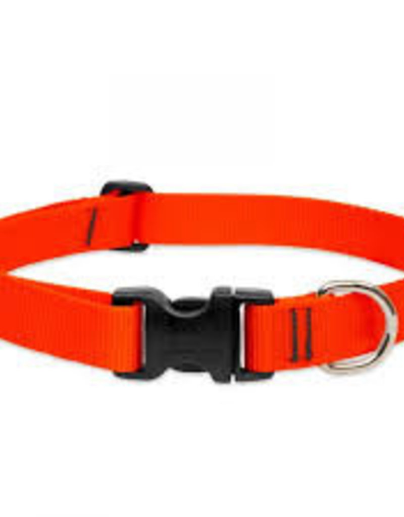 "LupinePet Lupine Collar 1"" Blaze Orange 12-20"""