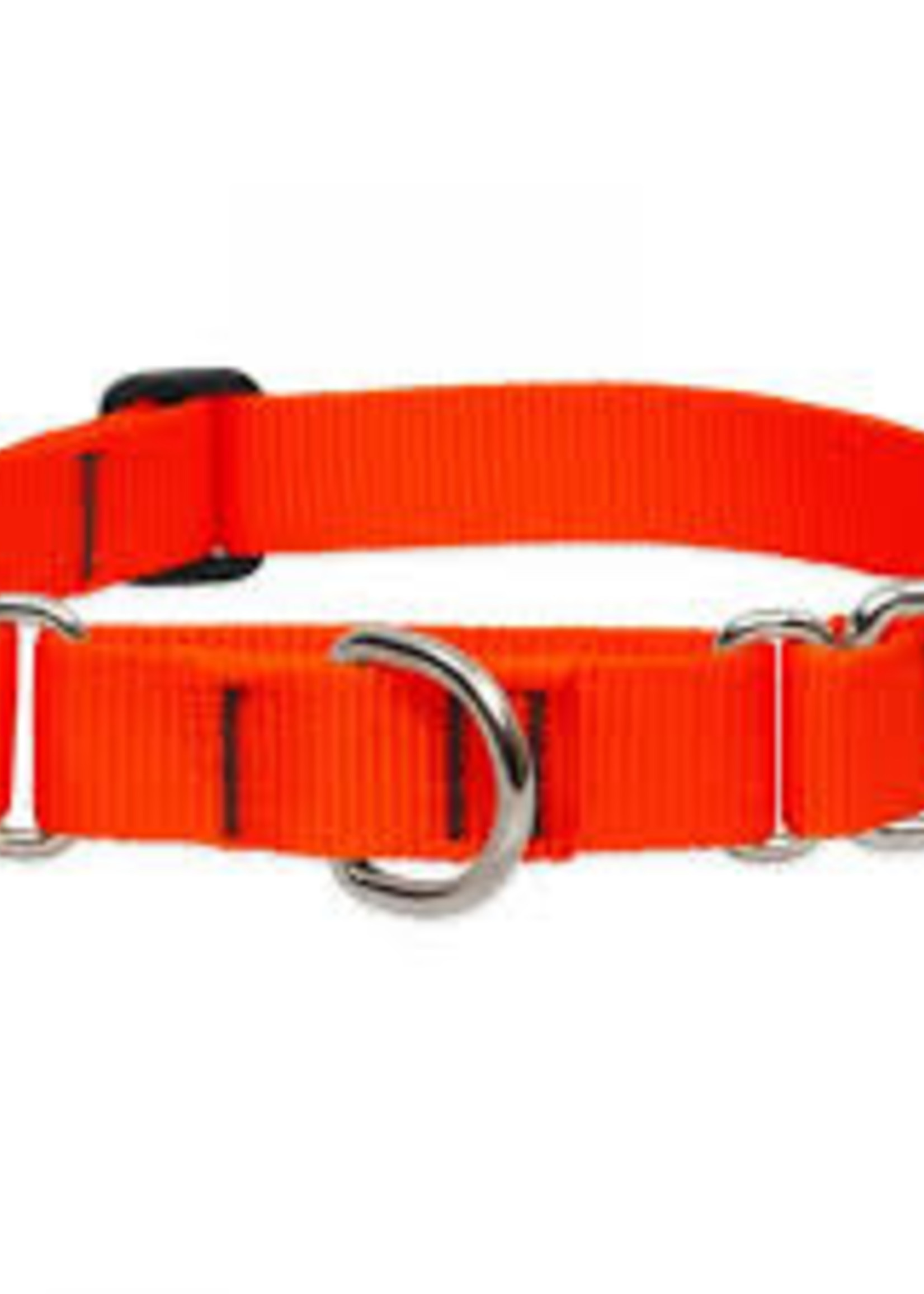 "LupinePet Lupine 3/4"" Blaze Orange Martingale 14""-20"""