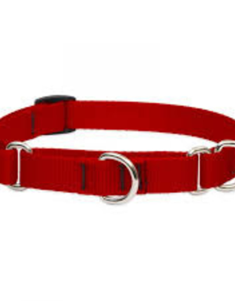 LupinePet Lupine 1in Red 19-27 Martingale