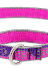 LupinePet Lupine HL 1in Pink Paws 19-27 Martingale Collar