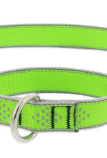 LupinePet Lupine HL 3/4in Green Diamond 14-20 Martingale Collar