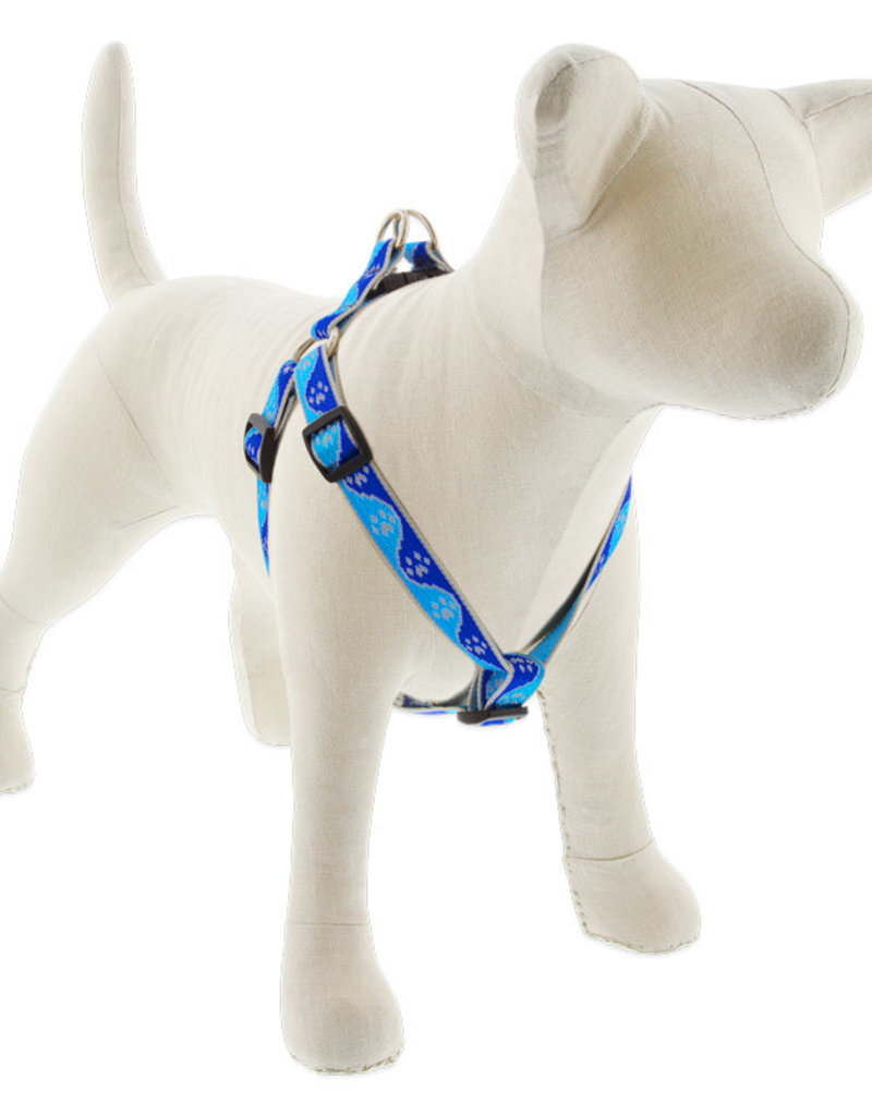 LupinePet Lupine HL 3/4in Blue Paws 20-30 Step In Harness