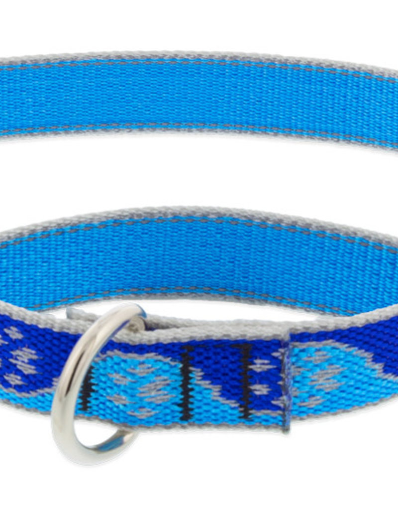 LupinePet Lupine HL 1in Blue Paws 19-27 Martingale Collar