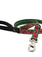 """LupinePet Lupine 1"""" Watermelon 2ft Leash"""