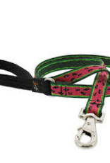 """LupinePet Lupine 1"""" Watermelon Leash 6ft"""