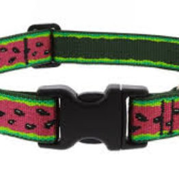 """LupinePet Lupine 1"""" Watermelon Collar 16-28in"""
