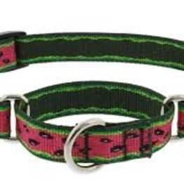 """LupinePet Lupine 1"""" Watermelon Martingale 15-22in"""