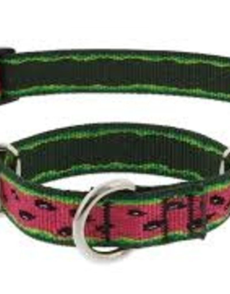 "LupinePet Lupine 1"" Watermelon Martingale 15-22in"
