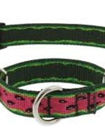 """LupinePet Lupine 1"""" Watermelon Martingale 19-27in"""