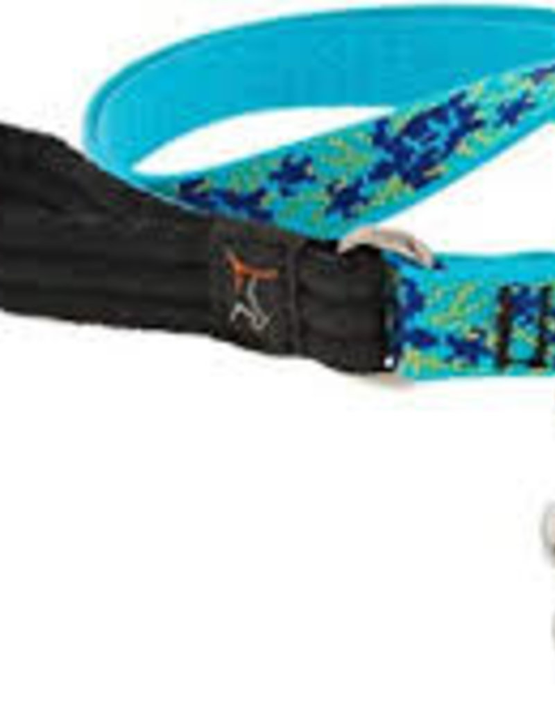"LupinePet Lupine 1/2"" Turtle Reef 4ft Leash"