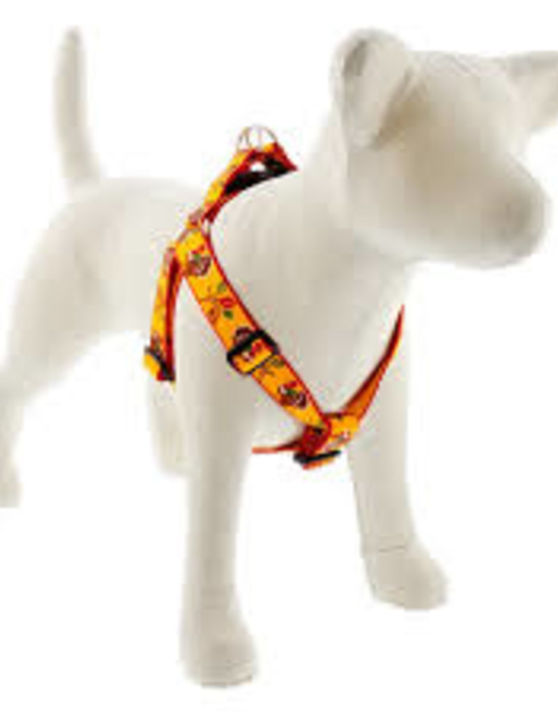 LupinePet Lupine 1in Turkey Trot 19-28 Step In Harness