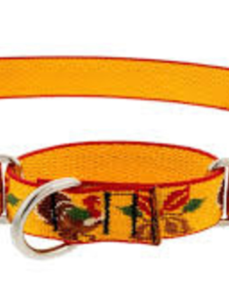 LupinePet Lupine 1in Turkey Trot 19-27 Martingale Collar