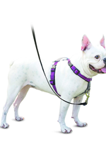 RADIO SYSTEMS CORP.(PET SAFE) PetSafe 3 in 1 Dog Harness Large Plum