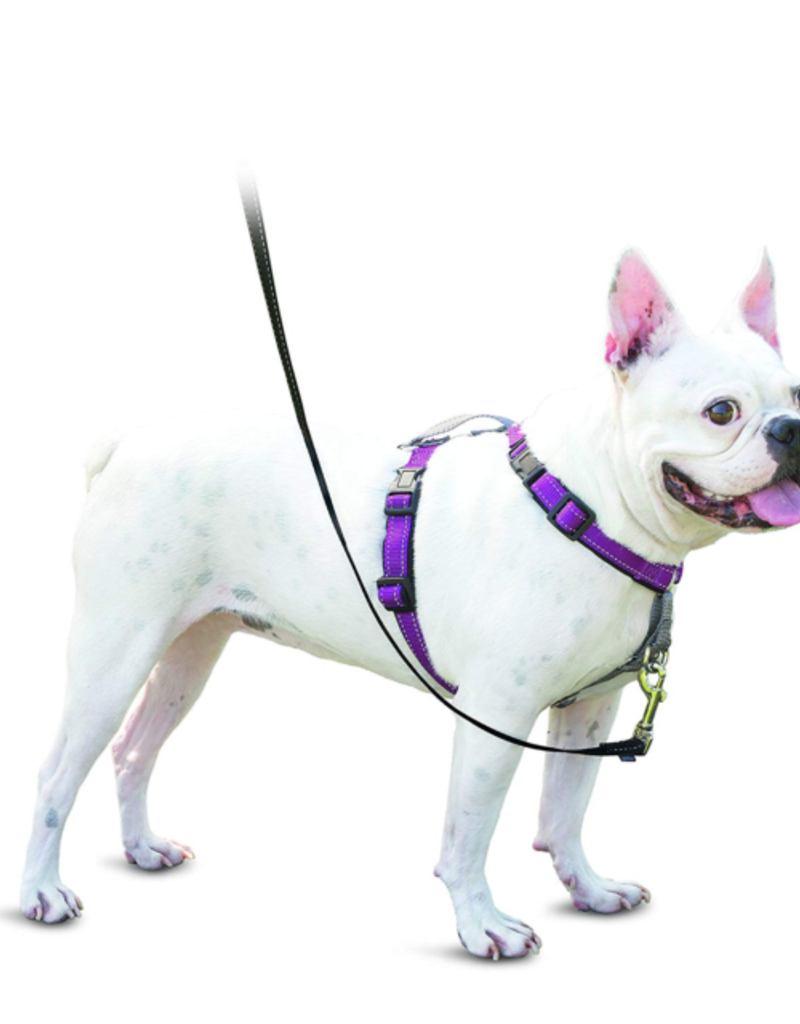 RADIO SYSTEMS CORP.(PET SAFE) PetSafe 3 in 1 Dog Harness Small Pum