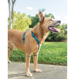 RADIO SYSTEMS CORP.(PET SAFE) PetSafe 3 in 1 Dog Harness Small Teal