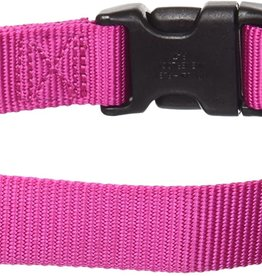 RADIO SYSTEMS CORP.(PET SAFE) PetSafe Martingale Collar W/Quick Snap Buckle 3/8 Petite Rsbry