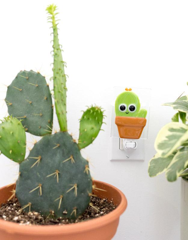 Veille sur Toi Veille sur toi - Cactus