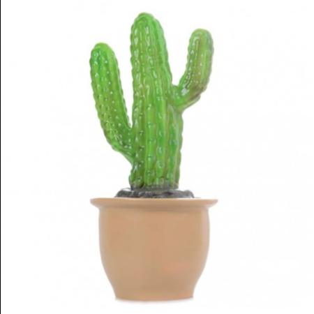 Egmont Egmont - Lamp Finger Cactus In Pot