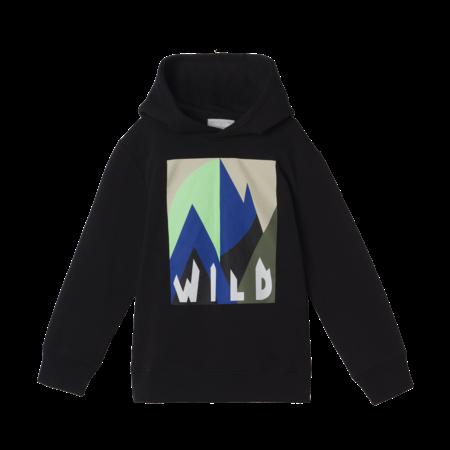Stella McCartney Stella McCartney - Kid boy hoodie graphic mountain