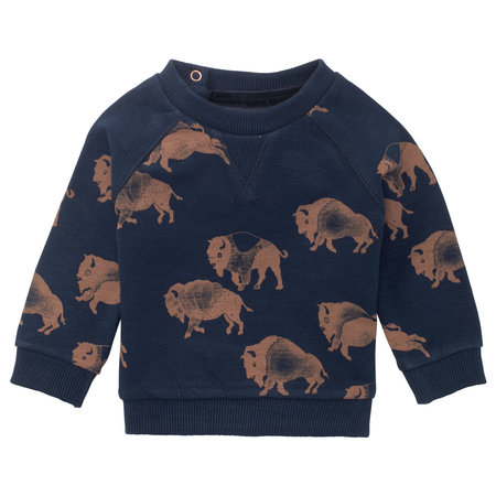 Noppies Noppies -Sweater Roanoke B